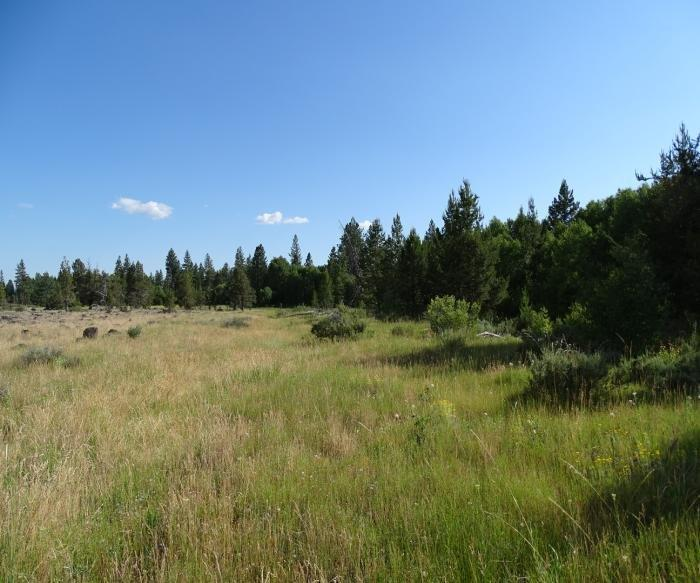 1.44 Acres in Northeast Klamath Co, OR