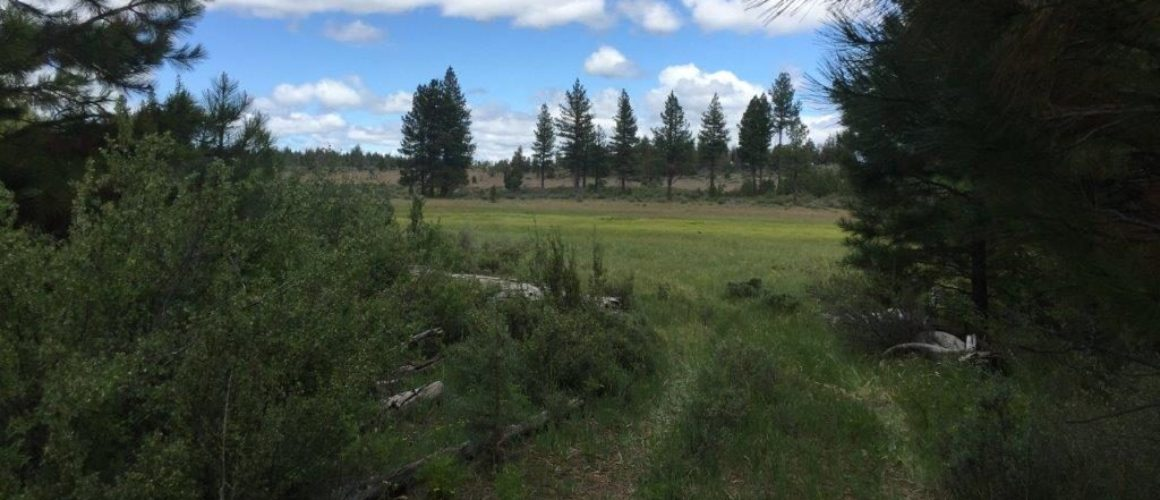 1.59 Acres near Sprague River, OR
