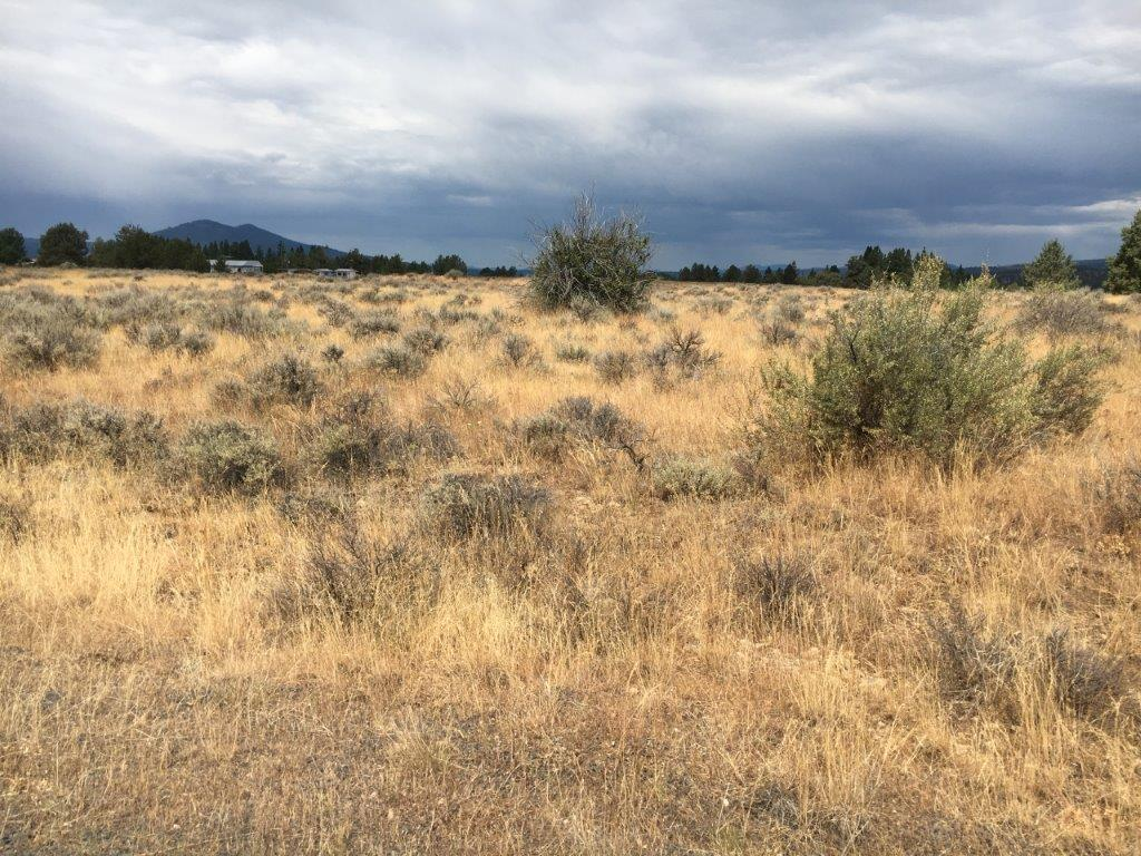 1.51 Acres near Sprague River, OR