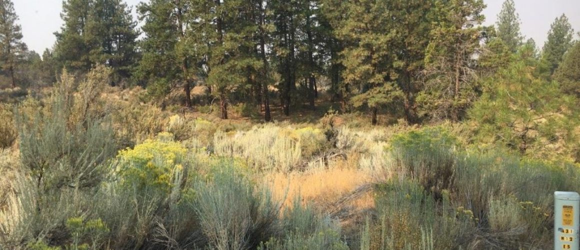 2.27 Acres in Klamath County