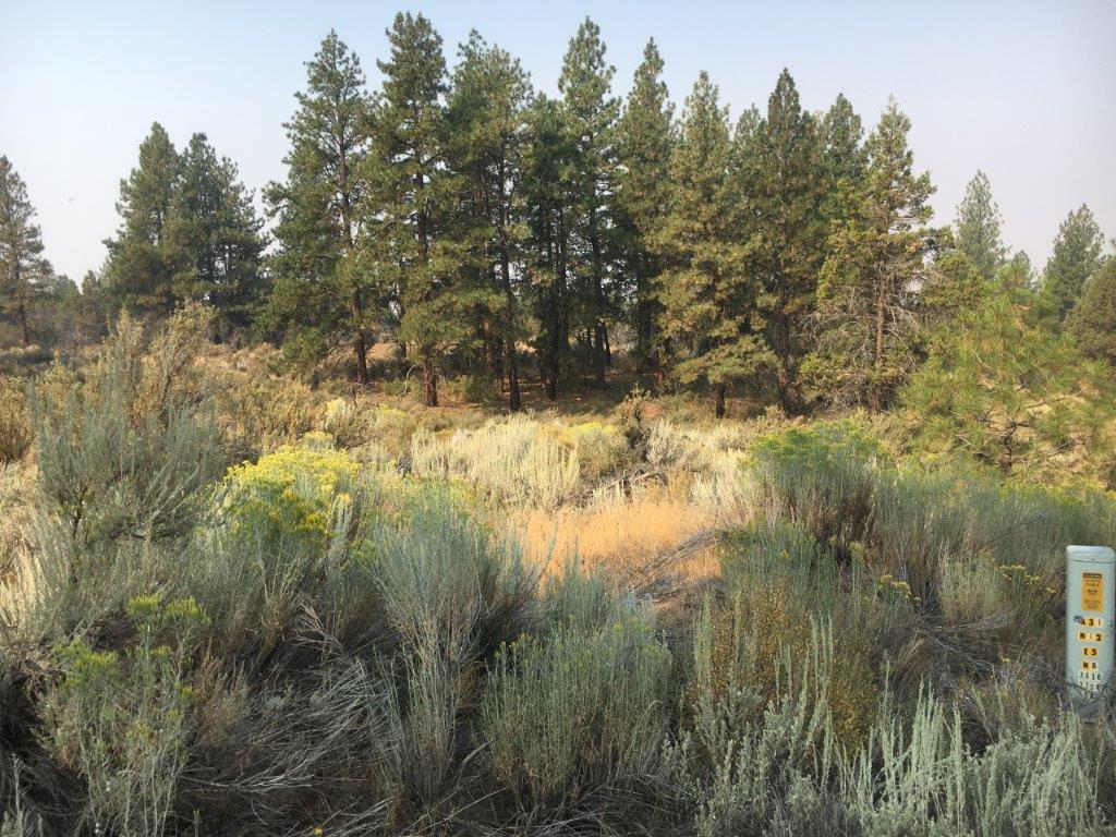2.27 Acres in Klamath County