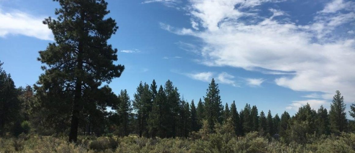 2.40 Acres in Sprague River, OR