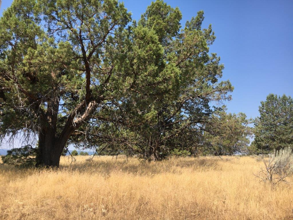 2.27 Acres in Klamath County, OR