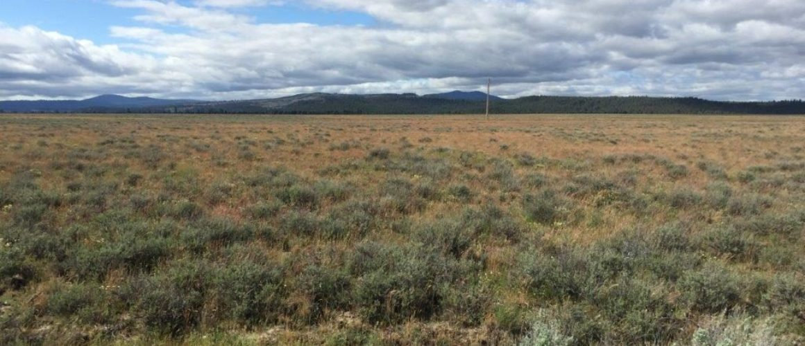 5.21 Acres in Southern Oregon