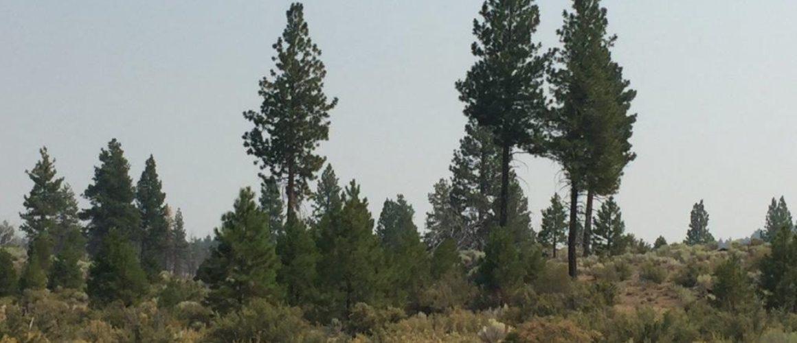 2.39 acres in Klamath County, OR