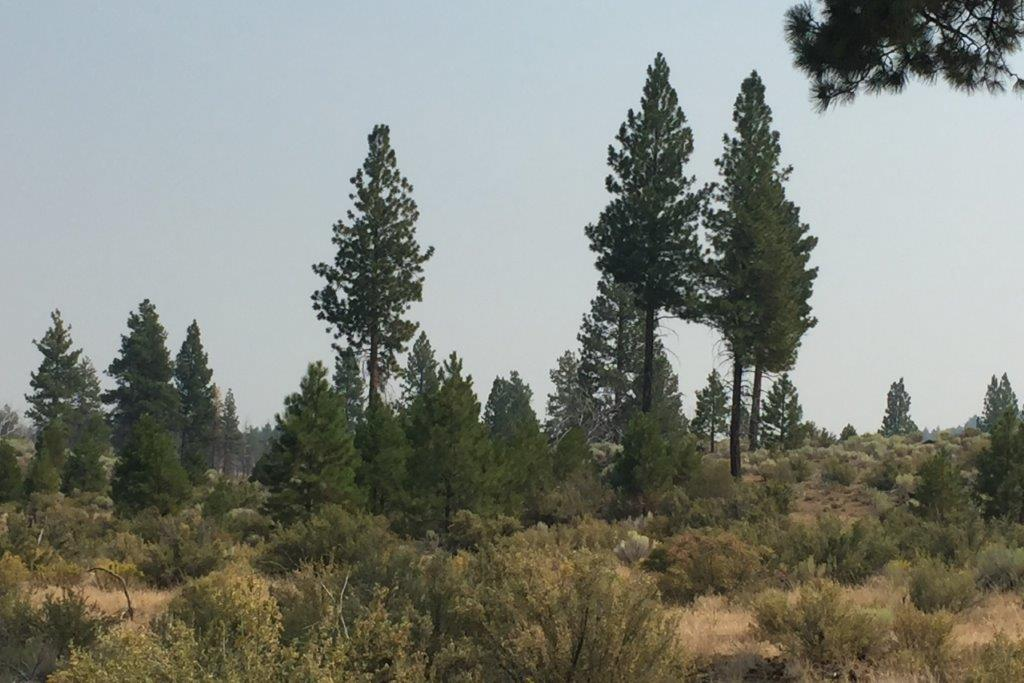 2.39 acres in Klamath County, OR