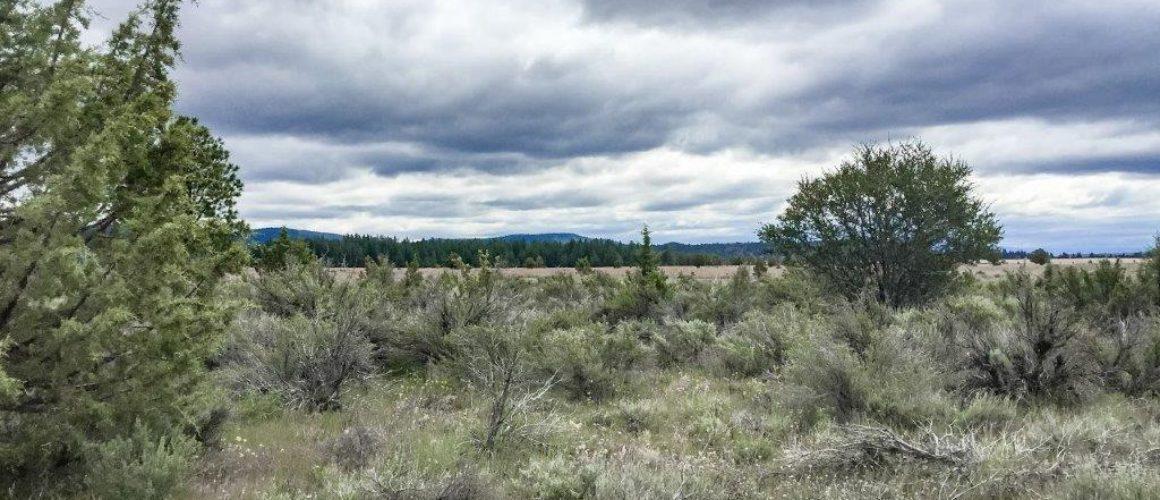 1.52 Acres in Klamath County