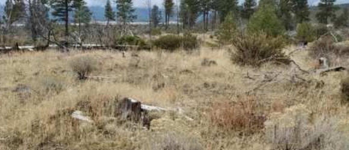 2.25 acres near Sprague River, OR