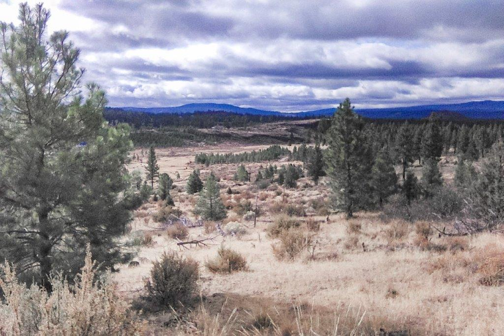 2.58 acres near Sprague River, OR