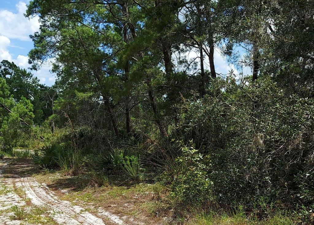 .26 acres in Highlands County, Florida