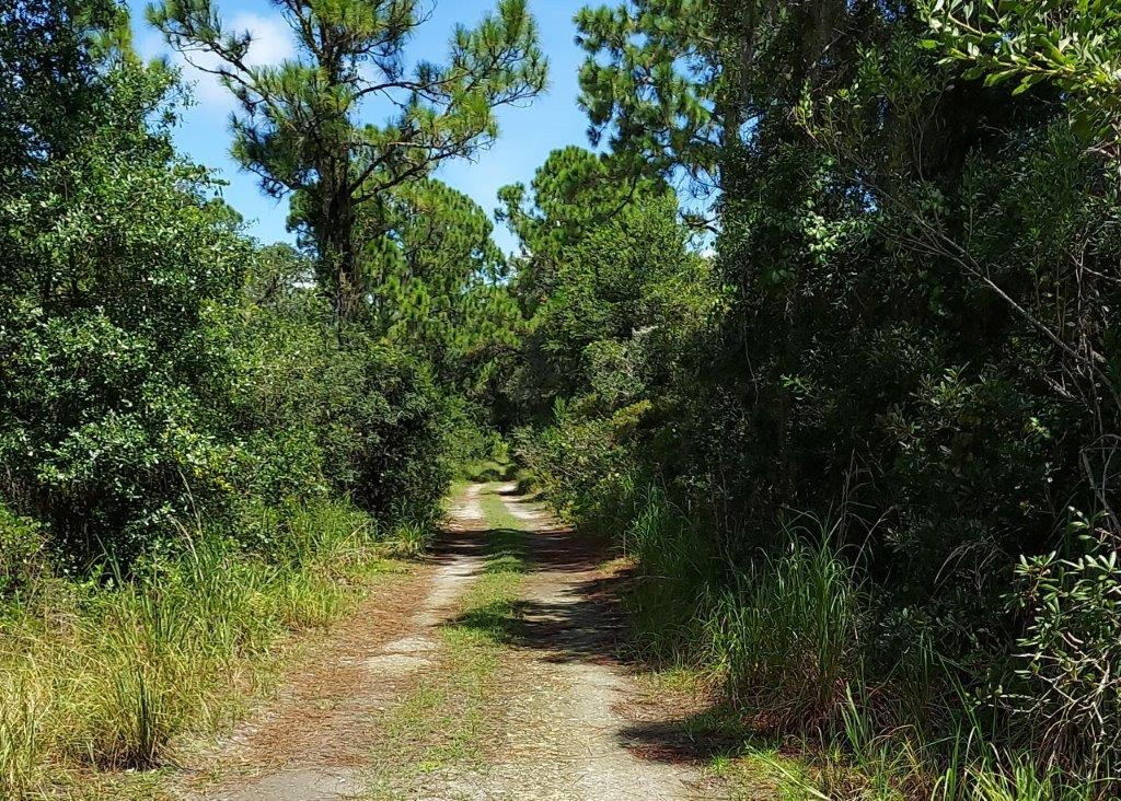 .35 acres in Highlands County, Florida